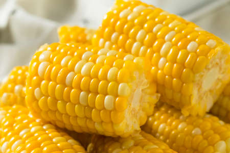 Raw Yellow Corn on the Cobb Ready to Eat