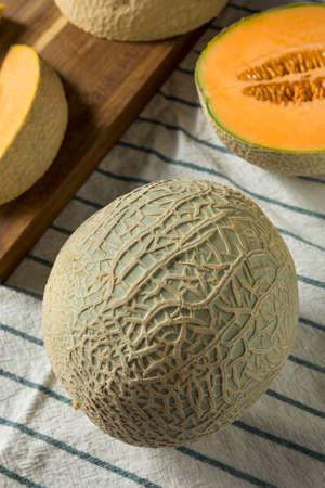 Raw Orange Organic Cantaloupe Cut into Slices Banco de Imagens