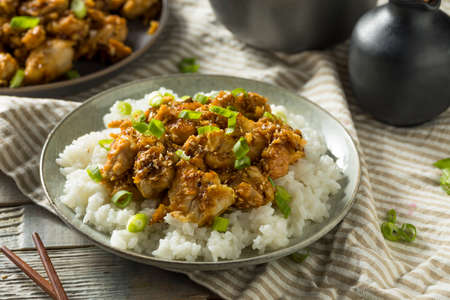 Homemade Sesame Chicken and Rice with Green Onions Reklamní fotografie