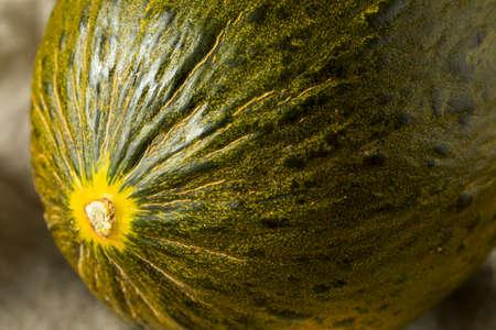 Raw Green Organic Santa Claus Melon Ready to Eat Stock Photo