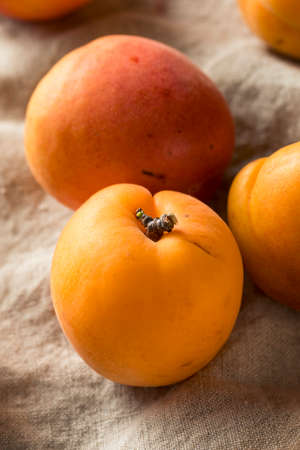 Raw Ripe Organic Apricots Ready to Eat Stock Photo