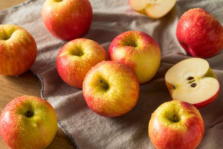 Manzanas crudas crudas orgánicas rojas listas para comer Foto de archivo - 105591446