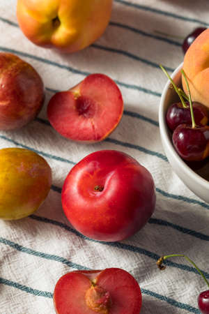 Raw Organic Assorted Stonefruit Peaches Plums and Nectarines 版權商用圖片