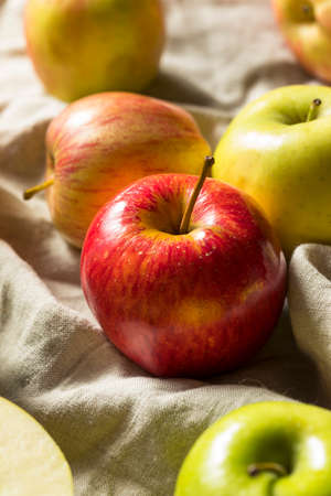 Raw Organic Assorted Apples Ready to Eat Stock Photo