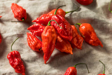Raw Organic Spicy Bhut Jolokia Ghost Peppers Ready to Cook