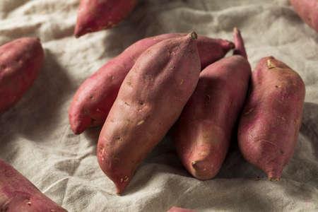 Raw Red Organic Japanese Yams Sweet Potatoes