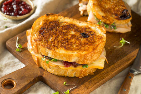Homemade Thanksgiving Turkey Panini with Cheese and Cranberry Sauce Фото со стока