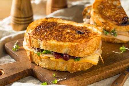 Homemade Thanksgiving Turkey Panini with Cheese and Cranberry Sauce Stock Photo