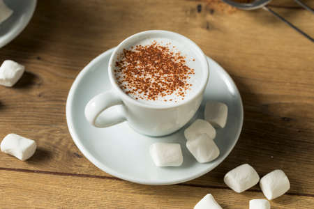 Healthy Homemade Milk Babyccino with Marshmallows and Cocoa Imagens