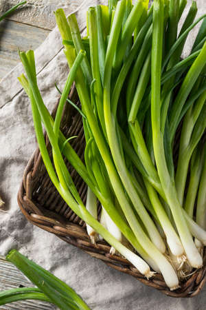 Raw Organic Green Onions in a Bunch