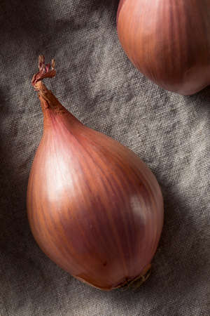 Raw Purple Organic Shallots Ready to Cook With