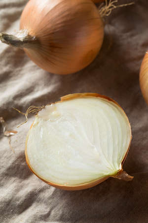 Raw Organic Yellow Sweet Onions Ready to Cook