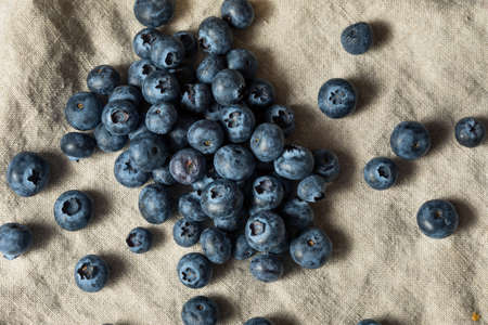Raw Blue Organic Blueberries Ready to Eat