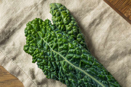 Healthy Organic Green Lacinato Kale Ready to Cook Banco de Imagens - 120078834