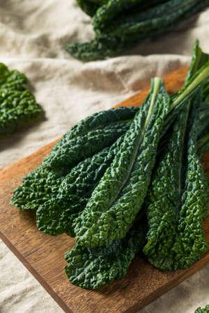 Healthy Organic Green Lacinato Kale Ready to Cook Banco de Imagens - 120079307
