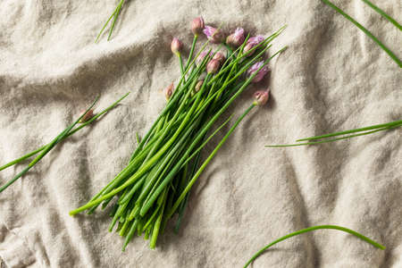 Raw Green Organic Flowering Chives Ready to Cook With Foto de archivo