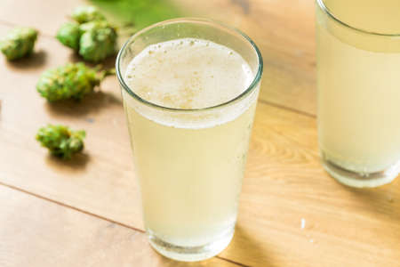 Refreshing Hop Falvoured Sparkling Water in a Glass Imagens