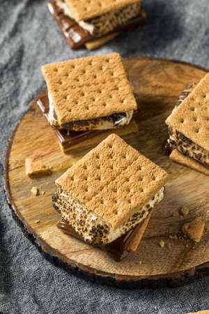 Homemade Gooey Smores Sandwiches with Chocolate and Marshmallows Stockfoto