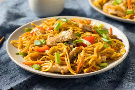 Homemade Japanese Chicken Yakisoba Noodles with Vegetables 免版税图像