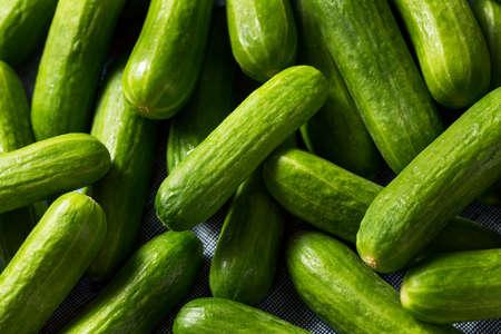 Rauwe groene biologische mini-cocktailkomkommers in een bos