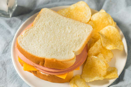 Homemade Bologna and Cheese Sandwich with Chips