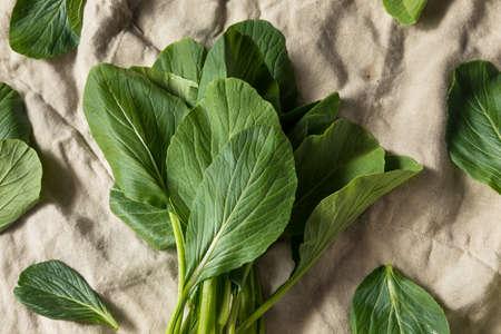 Raw Green Organic Chinese Gai Lan Ready to Cook Zdjęcie Seryjne