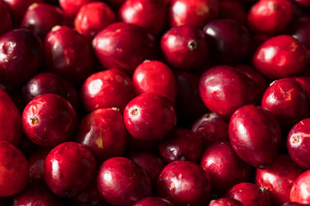 Raw Red Organic Cranberries in a Bowl