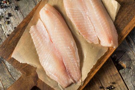 Raw White Organic Tilapia Fish Ready to Cook Stock Photo