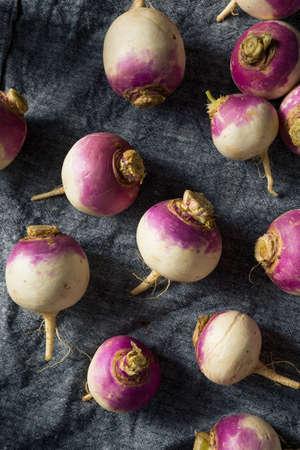 Raw Organic Purple Turnips Ready to Eat Banco de Imagens - 132996172