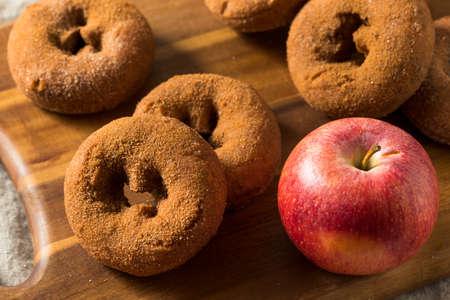 Ciambelle di sidro di mele alla cannella fatte in casa con zucchero Archivio Fotografico