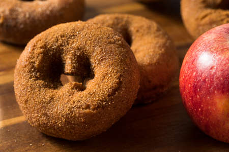 Homemade Cinnamon Apple Cider Donuts with Sugar
