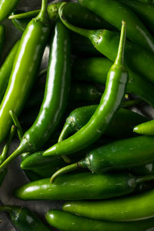 Raw Green Organic Serrano Peppers in a Bowl Stock Photo