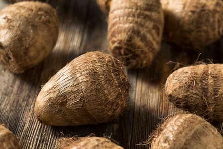 Raw Organic Brown Taro Root Ready to Cook Reklamní fotografie