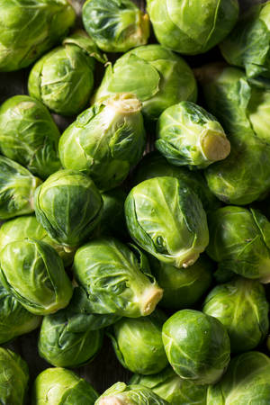 Raw Organic Green Brussel Sprouts in a Bowl