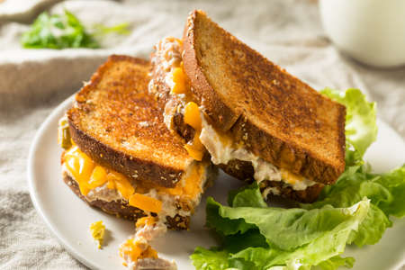 Homemade Toasted Tuna Melt Sandwich with Cheese Stock Photo
