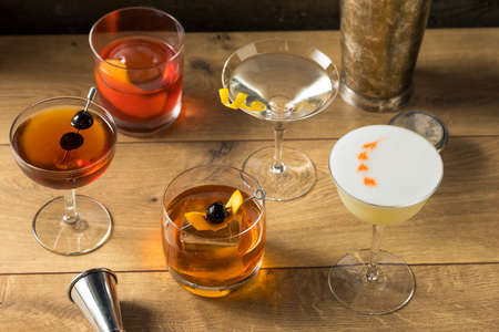 Boozy Classic Cocktail Assortment with Martini Old Fashioned and Negroni