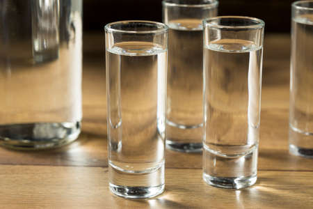 Strong Boozy Russian Vodka Shots Ready to Drink Zdjęcie Seryjne