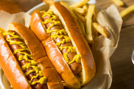 Homemade Hot Dog with Mustard and French Fries