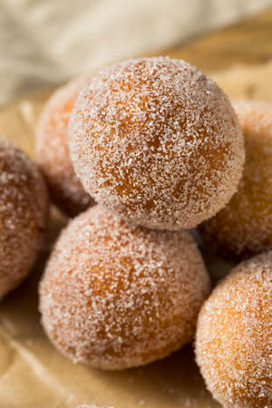 Homemade Fried Cake Donut Holes with Sugar Ready to Eat Reklamní fotografie