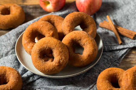 Homemade Sweet Apple Cider Donuts with Sugar Foto de archivo