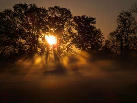 Foggy Sunrise Zdjęcie Seryjne - 13102370