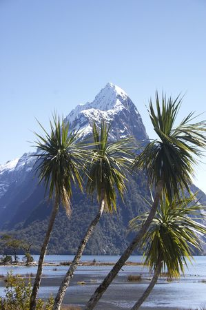 Mitre peak, New-Zealand at Milford Sound photo