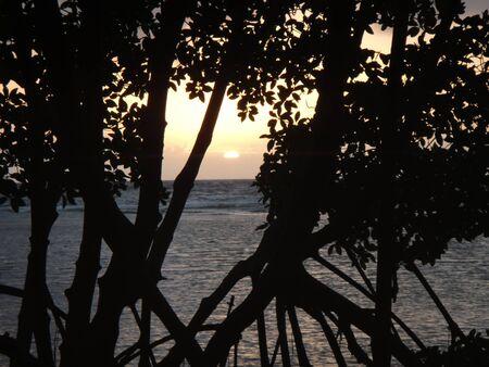 Sunrise over the barrier reef, Belize Reklamní fotografie