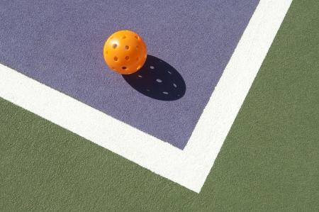 no body: Pickleball Laying on Edge of Court