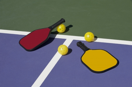 paddles: Pickleball - Colorful Paddles Ball and Court