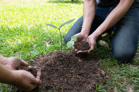 Two young men planting trees in the garden to preserve environment concept, nature, world, ecology and reduce air pollution.