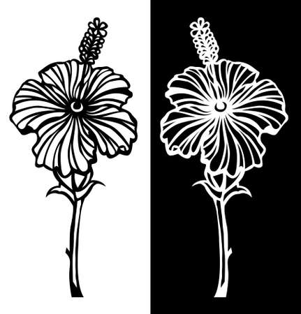 Rose mallows or hibiscus flower vector line art is in black and white background