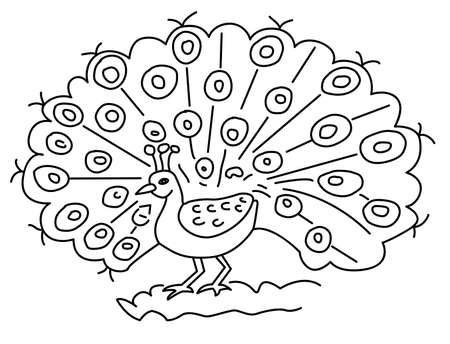 Peacock with feathers - Rangoli, alpona or drawing for children vector line art