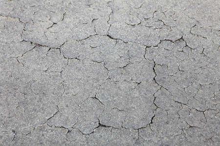 乾燥の外観