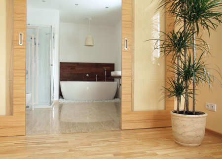View of a modern en suite bathroom from a bedroom Stock Photo - 12515189